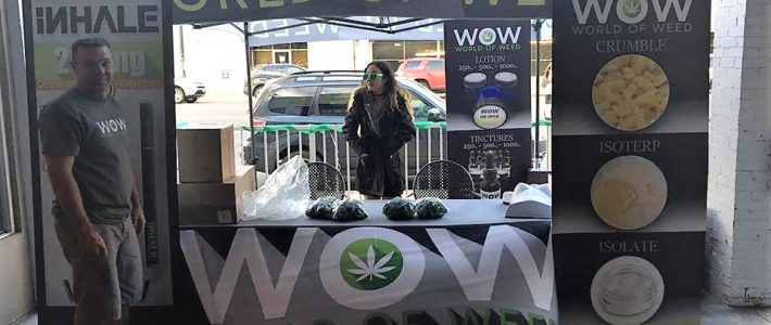 420 Event With World of Weed at Civic Center Park in Denver